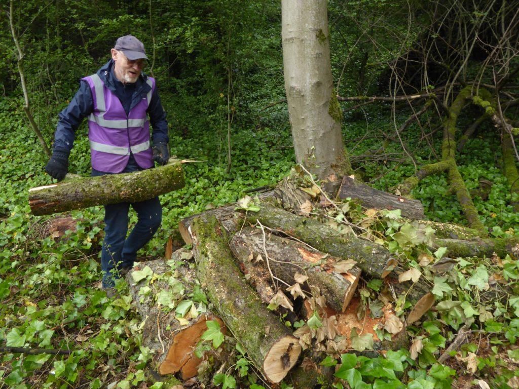 Man carrying large log to log pile